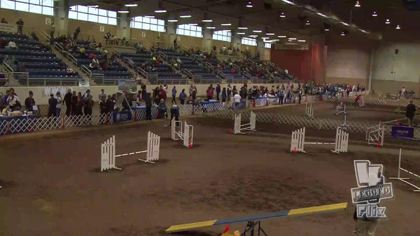 03 National Agility Championships