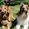 Murphy and Luke