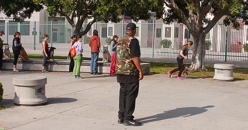 LA Coliseum Pitbull class 2013