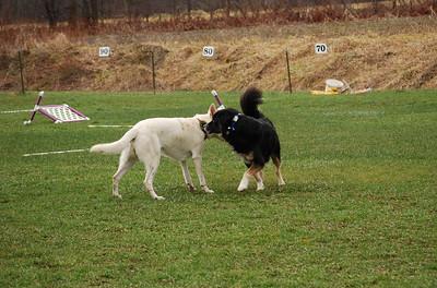 Playtime at Sugar Bush Farm