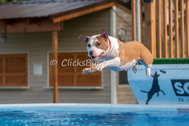STK9 Pool Rental - Thursday, May 12, 2016 - Frame: 9853