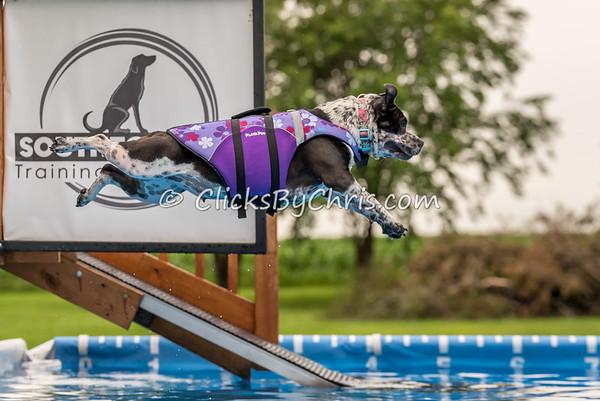 Pool Rental - Wednesday, July 1, 2015 - Frame: 4806