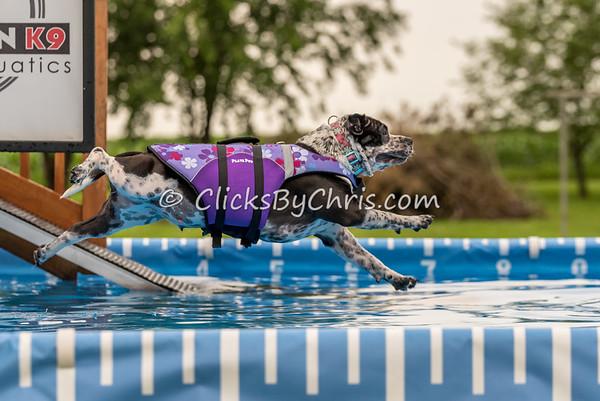 Pool Rental - Wednesday, July 1, 2015 - Frame: 4807