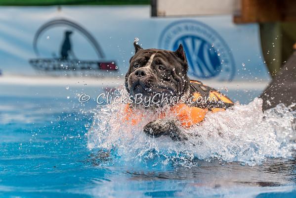 Pool Rental - Wednesday, July 1, 2015 - Frame: 4803