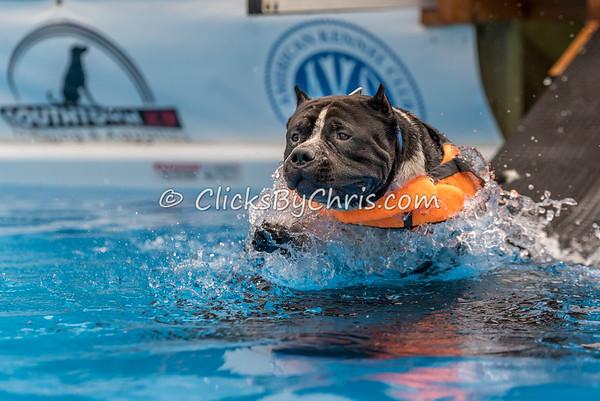 Pool Rental - Wednesday, July 1, 2015 - Frame: 4802