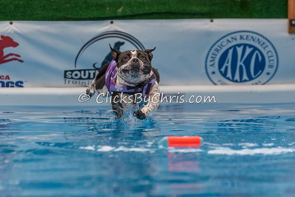 Pool Rental - Wednesday, July 1, 2015 - Frame: 4810