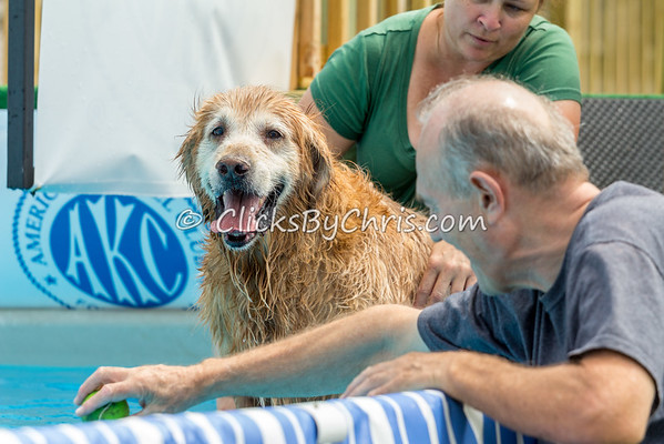 Pool-Rental-20140809-20140808-0008