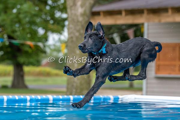 Pool Rental - Tuesday, Sept. 8, 2015 - Frame: 5321