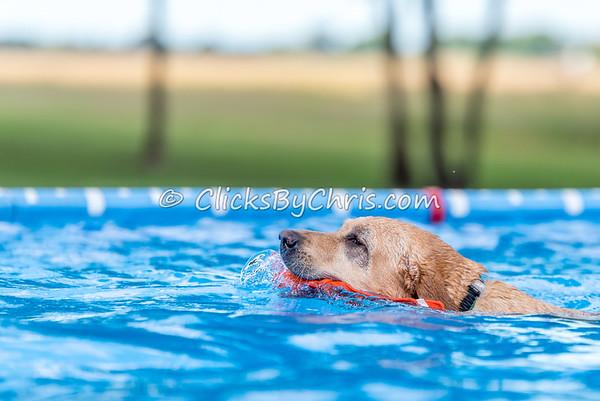 Pool Rental - Saturday, Sept. 12, 2015 - Frame: 5434