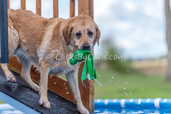 Pool Rental - Saturday, Sept. 12, 2015 - Frame: 5436