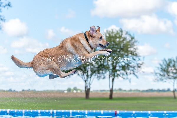 Pool Rental - Saturday, Sept. 12, 2015 - Frame: 5458