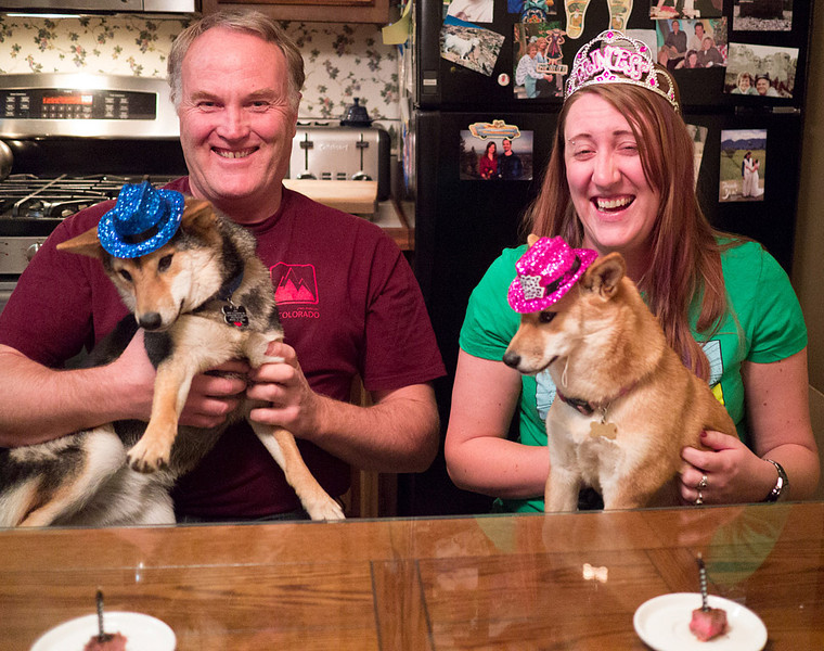 Puppies' first birthday party,<br /> Steak cubes with candles and party hats!