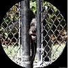 nov 01,2012   enterprise dog park   clearwater,fl  _img_0459_ (1)