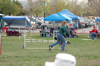 Ellen and Boost finish a jump