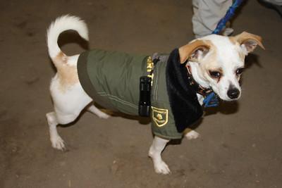 Fun police(dog)