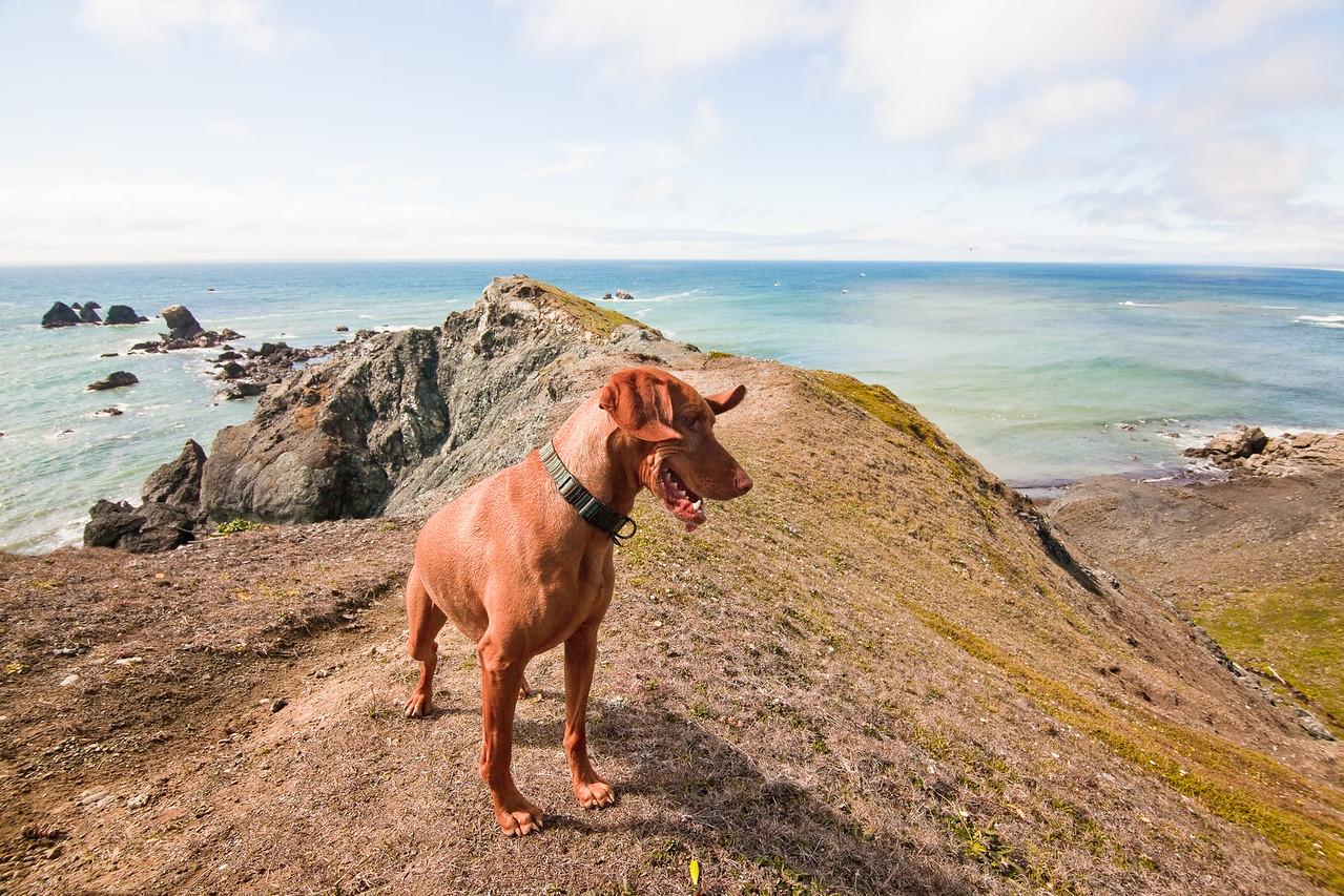 Enjoying the Coast