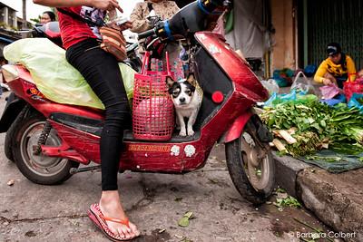 Hoi An, Viet Nam | 2015