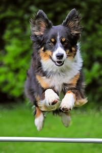 Jess jumping