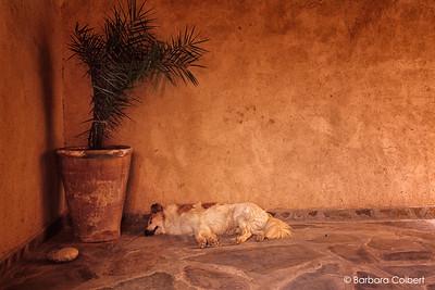 Skoura, Morocco | 2005