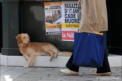 Venice, Italy | 2006