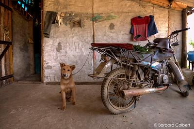 Sapa, Viet Nam | 2015