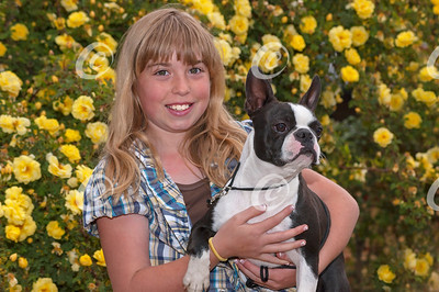 Boston Terrier and his Junior Handler