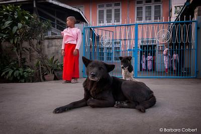 Nyaungshwe, Myanmar | 2014