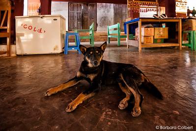 Indein, Myanmar | 2014