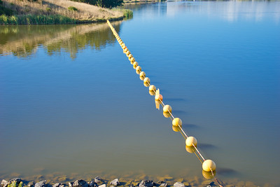 Buoys on Lake Ginninderra