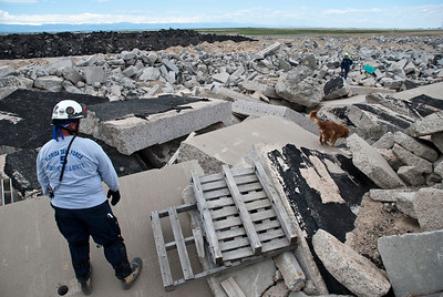 Members of various Urban Search and Rescue teams practice in a rubble field near the Denver International Airport with the Colorado Front Range in the background