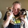 puppies7-2