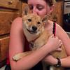 Puppies52