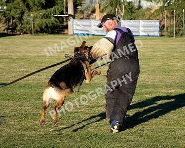 dogstock2010-2028