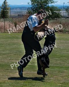 dogstock2010-2726