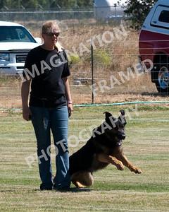 dogstock2010-2715