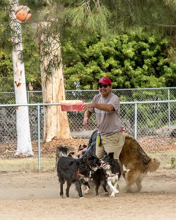Dog Park, October 2016, Lee and Vince.