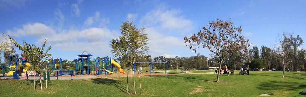 Harry Griffen Park views