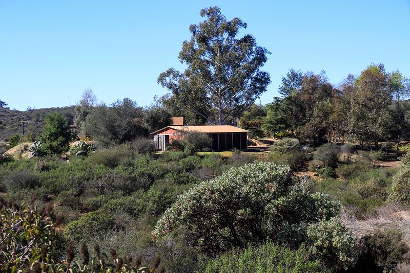 Bonnie Wheeler's house and barn.