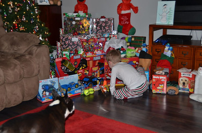 Christmas 2012 @ Dogwoodgrove