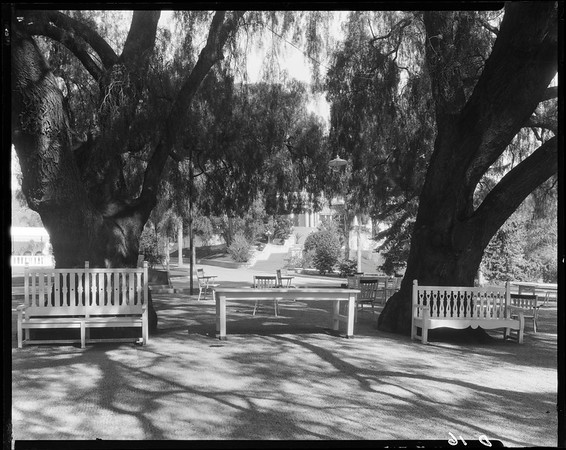 Lawn in front of house, Doheny Ranch, near Doheny Road, Beverly Hills, Calif., ca. 1915-1930s?