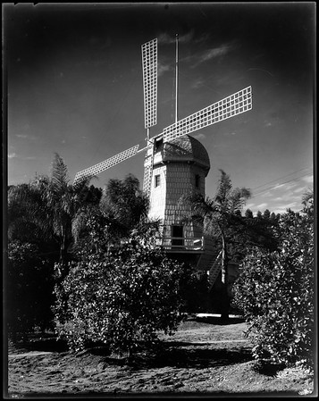 Windmill, Doheny Ranch, near Doheny Road, Beverly Hills, Calif., ca. 1915-1930s?