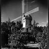 Windmill, Doheny Ranch, near Doheny Road, Beverly Hills, Calif., ca. 1915-1930s?