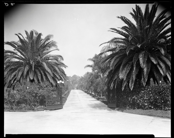 Front gate, Doheny Ranch, near Doheny Road, Beverly Hills, Calif., ca. 1915-1930s?
