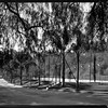 Tennis court?, Doheny Ranch, near Doheny Road, Beverly Hills, Calif., ca. 1915-1930s?