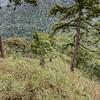 ดอยลังกาหลวง ดอยลังกาน้อย อุทยานแห่งชาติขุนแจ