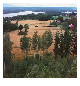 Blick vom Aussichtsturm Nykulla, Provinz Kronobergs län (Schweden) am 7. August 2016