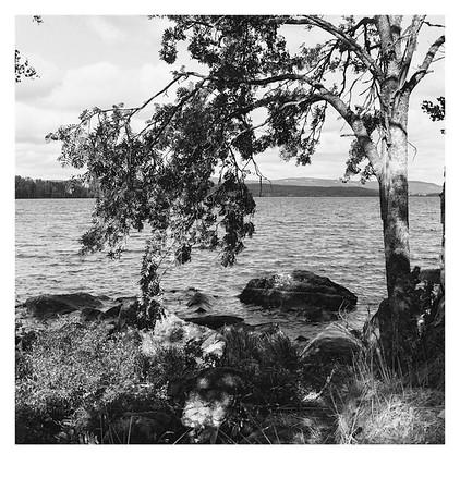 Ufer des Bysjön bei Sunnansjö (Schweden), 14. August 2016