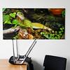 Bilder von Christoph Rau an den Wänden in Verwaltungsgebäude und Werkstatt des  EAD (Eigenbetrieb für kommunale Aufgaben und Dienstleistungen) Darmstadt