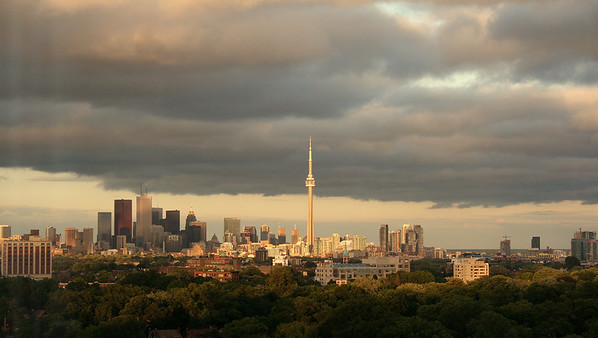 Views from My Apartment in High Park