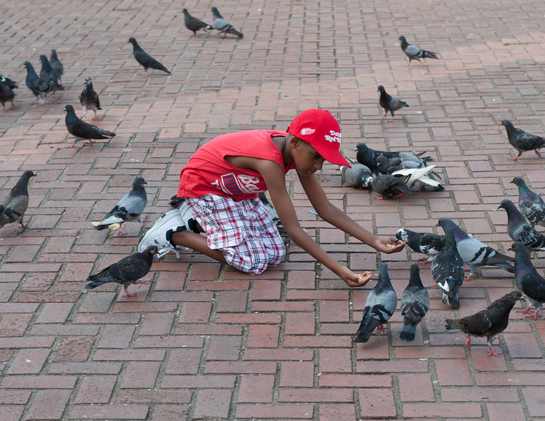 Feeding The Pigeons I